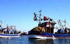 Revelan nuevos pagos irregulares de pesqueras a parlamentarios