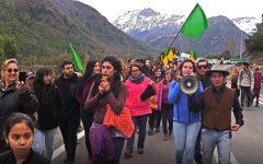 Avanzan gestiones para declarar Los Queñes como Santuario de la Naturaleza