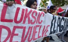 Pacoleaks: La mira sobre movimientos contra Celulosa Arauco y Minera Los Pelambres
