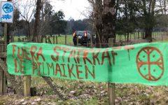 Pacoleaks: El monitoreo de inteligencia a protestas mapuche contra hidroeléctricas