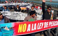 Juan Carlos Cárdenas: «Grandes pesqueras mantienen capturada la política chilena»
