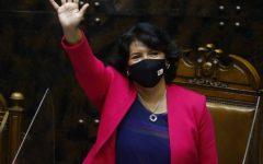 Senadora Yasna Provoste coloca paños fríos al TPP-11: «No es prioridad»